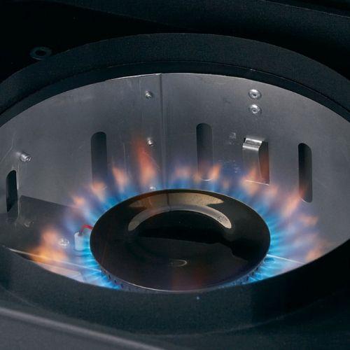 affumicatore verticale a gas verticale broil King 923613
